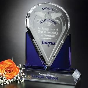Distinction Award 8-1/2 in.