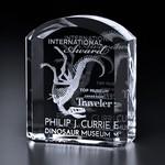 Morton Optical Crystal Award 8