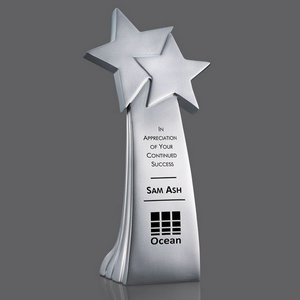 Auckland Star Award - Silver Resin 8 in.