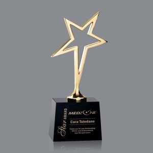 Keynes Star Award - Black/Gold 10in.