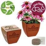 Decorated Bamboo Pot Blossom Kit