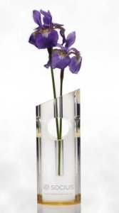 Deborah Ann Crystal Engraved Vase