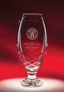 Cycle Cup Glass Award Trophy