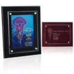 Floating Glass Plaque - 8in x 10in